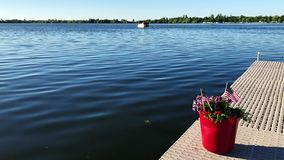 Us flags and red flowers in pot on a boat dock while a pontoon on a beautiful Minnesota lake passes by on july 4th.