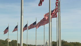 US flags at Washington Monument in Washington, DC. Flags of the United States at Washington Monument in Washington, DC stock video footage