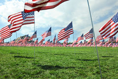 US Flags Waving outside the Saint Louis Art Museum Royalty Free Stock Image