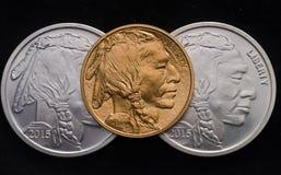 US-Goldbüffel ontop von 2 silbernen Büffel-Runden Lizenzfreie Stockfotografie