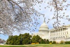 US-Kapitol, das im Frühjahr, Washington DC, USA errichtet Lizenzfreie Stockfotografie