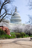 US-Kapitol-Gebäude im Frühjahr Stockfotos
