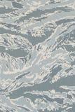 US-Luftwaffe digitales tigerstripe Tarnungsgewebe Lizenzfreie Stockbilder