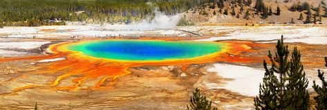 Free US National Parks, Yellowstone National Park Royalty Free Stock Photos - 138266698