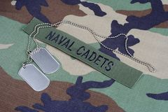US NAVAL CADETS branch tape and dog tags on woodland camouflage uniform. Background Stock Photo