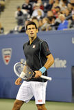US Open 2013 (373) de Djokovic images libres de droits