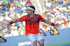 US Open 2015 (92) Fognini Fabio Lizenzfreies Stockbild