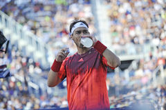 US Open 2015 (90) Fognini Fabio Stockfoto