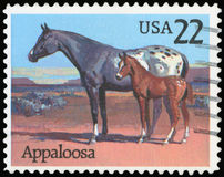 US Postage Stamp royalty free stock image