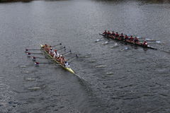 US Rowing (left) and Real Circulor Labradoers(right) Royalty Free Stock Photography