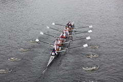 US Rowing races in the Head of Charles Reg Stock Images