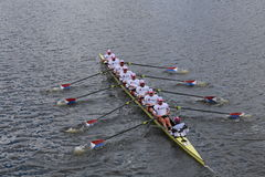 US Rowing races in the Head of Charles Regatta Men's Championship Eights Royalty Free Stock Photos