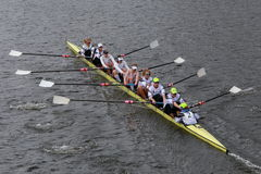US Rowing races in the Head of Charles Regatta Men's Championship Fours Stock Image