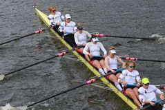 US Rowing races in the Head of Charles Regatta Women's Championship Eights Royalty Free Stock Photography