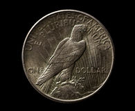 US silver 1925 year dollar with eagle isolated on black Stock Photography