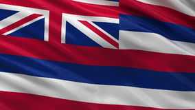 US state flag of Hawaii - seamless loop. US state flag of Hawaii gently waving in the wind. Seamless loop with high quality fabric material stock footage