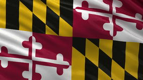US state flag of Maryland - seamless loop. US state flag of Maryland gently waving in the wind. Seamless loop with high quality fabric material stock video