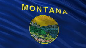 US state flag of Montana - seamless loop. US state flag of Montana gently waving in the wind. Seamless loop with high quality fabric material stock footage