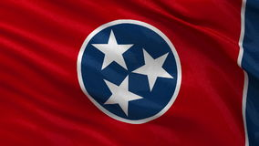 US state flag of Tennessee - seamless loop. US state flag of Tennessee gently waving in the wind. Seamless loop with high quality fabric material stock video