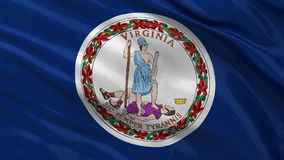 US state flag of Virginia - seamless loop. US state flag of Virginia gently waving in the wind. Seamless loop with high quality fabric material stock video