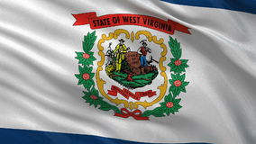 US state flag of West Virginia - seamless loop. US state flag of West Virginia gently waving in the wind. Seamless loop with high quality fabric material stock video