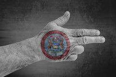 US State Michigan Seal flag painted on male hand like a gun royalty free stock image