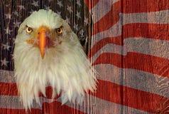 USA-Adler mit amerikanischer Flagge und hölzerner Beschaffenheit Stockfoto