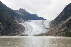 USA Alaska - The Glacier Point Wilderness Safari - Davidson Glacier Royalty Free Stock Images