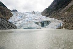 USA Alaska - The Glacier Point Wilderness Safari - Davidson Glacier Stock Image