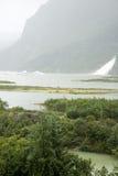 USA Alaska - Mendenhall glaciär och sjö Royaltyfria Foton