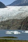 USA Alaska - Mendenhall Glacier and Lake Royalty Free Stock Photography