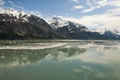USA - Alaska - nationalpark Arkivbild