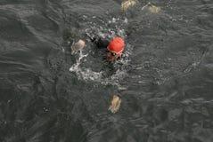 USA AMBASSADOR RUFUS GIFFORD pływanie 500 metrów Fotografia Royalty Free
