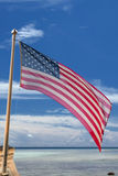 Usa American flag stars and stripes on the tropical sky backgrou Stock Photo