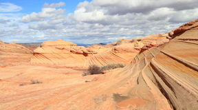 USA, Arizona/Coyote Buttes: Second WAVE Royalty Free Stock Photos