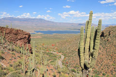 Arizona: Salt River Valley with Roosevelt Lake Royalty Free Stock Photos