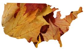 USA + Autumn. USA with leaves as the background vector illustration