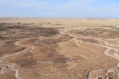 USA, AZ: Osłupiały las NP - Drenażowy basen Zdjęcia Stock