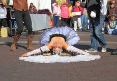 USA, AZ: Street Artist 5 - Dead Swan? Stock Image
