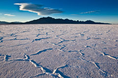 USA - Bonneville salt flats Stock Images