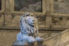 Lions on the staircase of Boston Pubic Library. At the turn of t. USA, Boston - January 2018 - Lion on the staircase of Boston Pubic Library. At the turn of the stock images