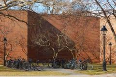 02 04 2011 USA, Boston: Parkering för cyklar, ljus, trottoar, Arkivbilder