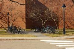 USA Boston, 02 04 2011: Parkering för cyklar, ljus, trottoar, Arkivfoton