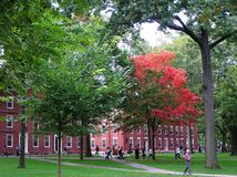 USA, Cambridge Massachusetts, Wrzesień, - 29, 2008 Piękny kampus stary uniwersytet harwarda w wczesnej jesieni zdjęcie stock