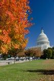USA Capitol budynek w Jesień, Waszyngton DC, USA zdjęcia stock