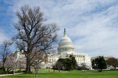USA Capitol budynek w wiosna, Waszyngton DC, USA zdjęcia royalty free