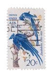 USA - CIRCA 1950s: A stamp printed in the  showing birds, cir Stock Images