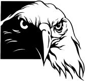 USA Eagle Cartoon Vector Clipart Royalty Free Stock Image