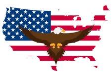 Usa eagle Royalty Free Stock Photo