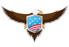 Usa eagle shield Royalty Free Stock Image